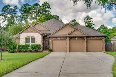 Magnolia Single Family Home For Sale: 32919 Greenfield Forest Drive