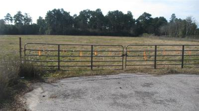 Hockley Residential Lots & Land For Sale: Fm 2920 Road