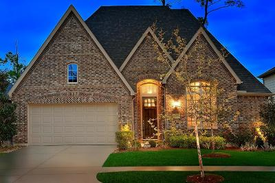 Single Family Home For Sale: 8122 Black Percher Street
