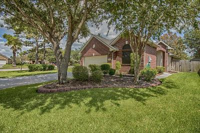 Pearland Single Family Home For Sale: 2207 E Marsala Drive