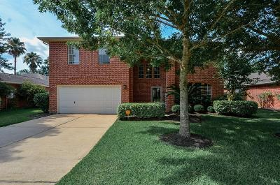 Pearland Single Family Home For Sale: 10008 Dawn Brook Drive