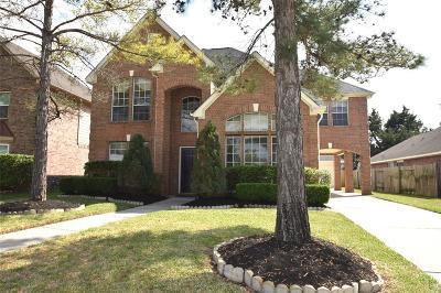 Houston Single Family Home For Sale: 18811 Amesbury Manor Lane