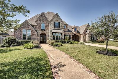 Friendswood Single Family Home For Sale: 1142 Rymers Switch