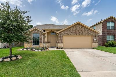 Houston Single Family Home For Sale: 10031 Corvallis Drive
