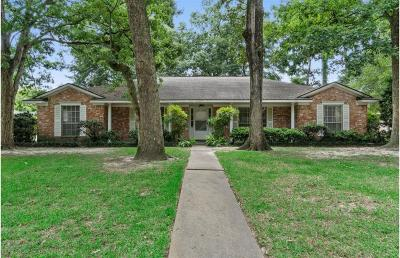 Houston Single Family Home For Sale: 1002 Old Mill Lane