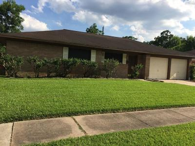 Houston Single Family Home For Sale: 4203 Knotty Oaks Trail