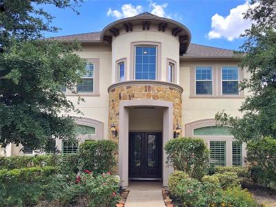 Katy Single Family Home For Sale: 28423 Tall Juniper Hill Drive