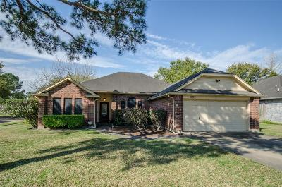 Sugar Land Single Family Home For Sale: 16910 Tranquil Drive