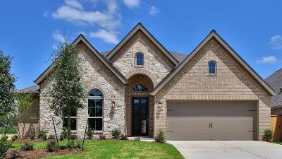 Conroe Single Family Home For Sale: 233 Torrey Bloom Loop