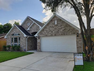Houston Single Family Home For Sale: 10602 Duane Street
