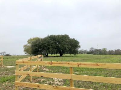 Lee County Country Home/Acreage For Sale: 4339 Fm 180
