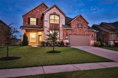 Tomball Single Family Home For Sale: 9423 Three Stone Lane