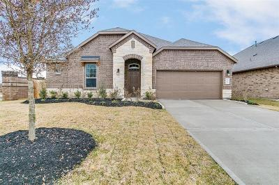 Fort Bend County Single Family Home For Sale: 3303 Emerald Valley Dr