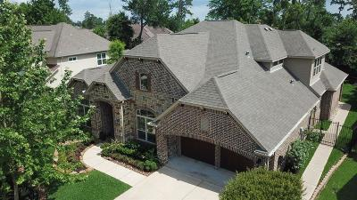The Woodlands Single Family Home For Sale: 91 S Beech Springs Circle