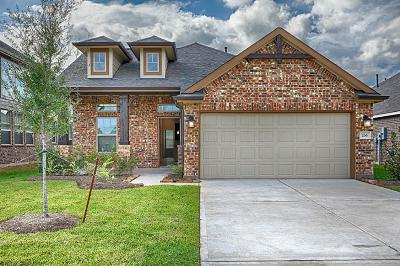 Dickinson Single Family Home For Sale: 236 Rolling Creek Lane