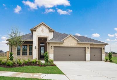 Fulshear Single Family Home For Sale: 28630 Rising Moon Lane
