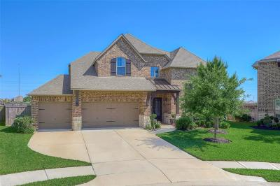 Harris County Single Family Home For Sale: 9134 Hills Junction Court
