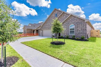 Alvin Single Family Home For Sale: 318 Burgundy