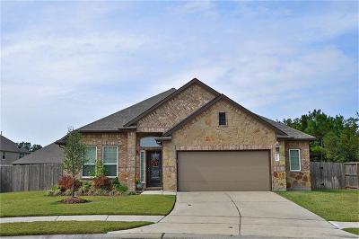 Porter Single Family Home For Sale: 24204 Nichols Trace Drive