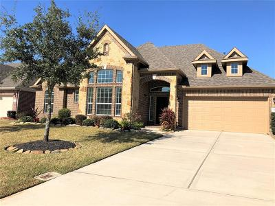 Dickinson Single Family Home For Sale: 1705 Coral Cliff Drive