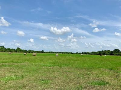 Austin County Country Home/Acreage For Sale: 0000 Kloss Road