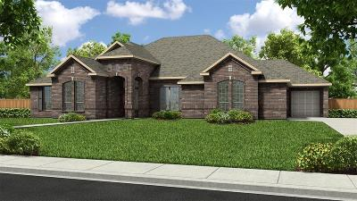 Tomball Single Family Home For Sale: 12927 Mossy Shore Drive