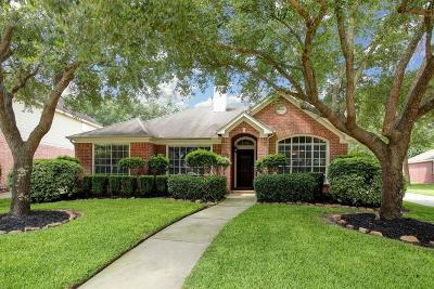 Houston Single Family Home For Sale: 16423 Drystone Lane