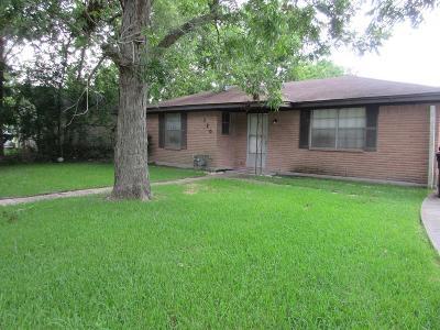 Eagle Lake Single Family Home For Sale: 110 E Union Street