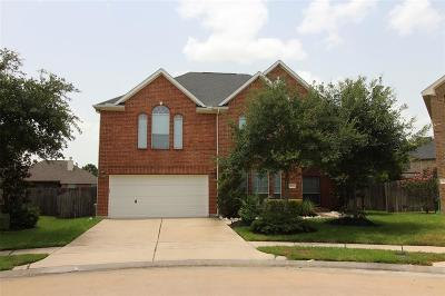 Fort Bend County Single Family Home For Sale: 9723 Dover Springs Court