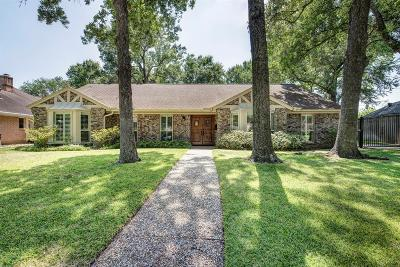 Houston Single Family Home For Sale: 218 Briar Hill Drive