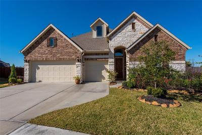 League City Single Family Home For Sale: 1310 Graham Trace Lane