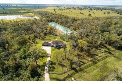 Rosharon TX Single Family Home For Sale: $829,000