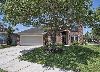 League City Single Family Home For Sale: 230 Farnworth Circle
