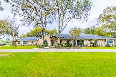 Katy Single Family Home For Sale: 26606 Willow Lane