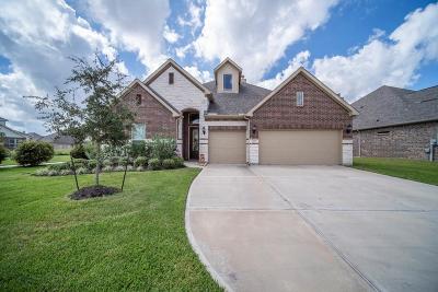 League City Single Family Home For Sale: 3076 Tradinghouse Creek Lane
