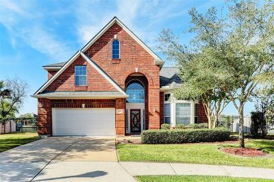 Houston Single Family Home For Sale: 10003 Lakeside Gables Drive