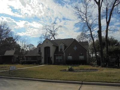 Tomball Single Family Home For Sale: 31215 Dorado Circle