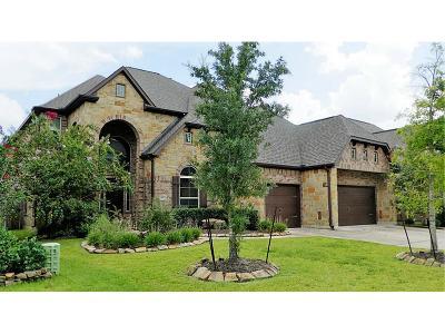 Spring Single Family Home For Sale: 2803 Randal Lake Lane