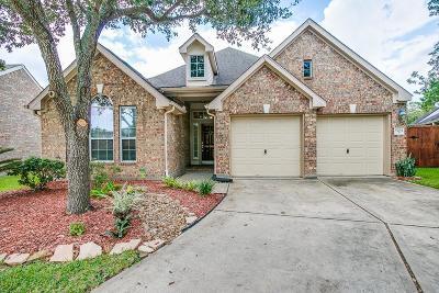 League City Single Family Home For Sale: 5204 Cottonwood Creek