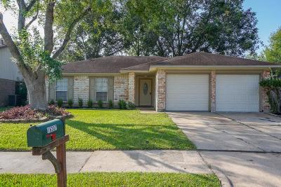 Houston Single Family Home For Sale: 16307 La Gloria Drive