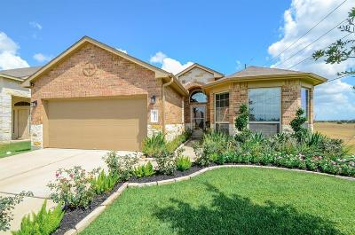 Katy Single Family Home For Sale: 20402 Chatfield Bend Way