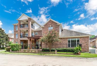 Houston Single Family Home For Sale: 302 Grand View Ter