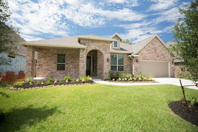 New Caney Single Family Home For Sale: 23530 Vernazza Drive