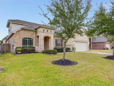 League City Single Family Home For Sale: 4464 Dinastia View Court