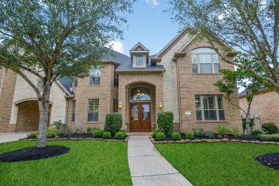 Sugar Land Single Family Home For Sale: 4518 Riley Way Lane