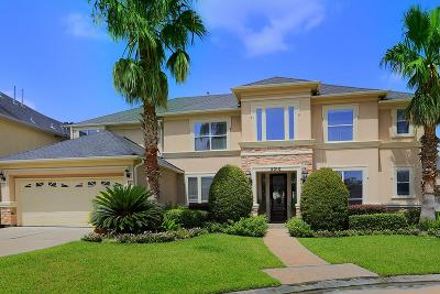 Houston Single Family Home For Sale: 2010 Ivy Crest Court