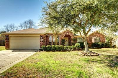 Tomball Single Family Home For Sale: 21503 Country Club Green Circle