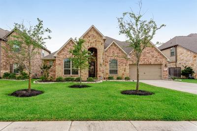 Tomball Single Family Home For Sale: 18419 Harlow Drive