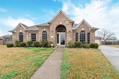 Baytown Single Family Home For Sale: 4922 Lone Oak Court