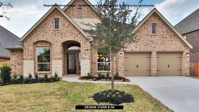 Pearland Single Family Home For Sale: 3113 Cactus Grove Lane